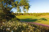 Flowerbeds and thick rough meet the fairways at Alamos Golf