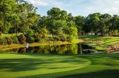 17greenb_arcadian_shores