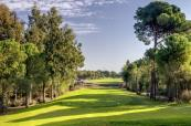The tree lined course at Cornelia Golf Club