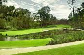 6th-hole-montagu-course-at-fancourt-1