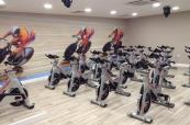 forest pine spin studio
