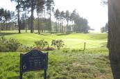 6th hole at the very beautiful Forest Pines Golf Club