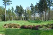 Stunning parkland with plenty of tree lined greens and Fairways at QHotels Forest Pines