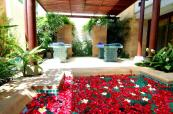 The Spa with Jacuzzi