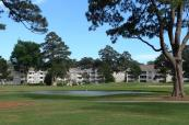 Myrtlewood - condo blocks (Copy)