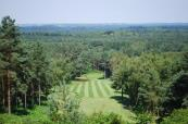 Tree lined fairway at the first class Old Thorns Golf Club