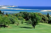 Palmares Golf Course have thick treelined fairways