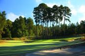 Pinehurst no2 4th 2762
