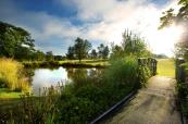 Stunning bridge over the water at Sandford Springs