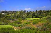 Pelican-Hill-6764-web
